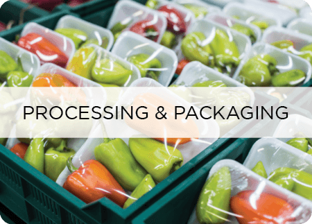 food safety processing packaging